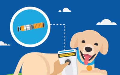 Pet Microchipping FAQs