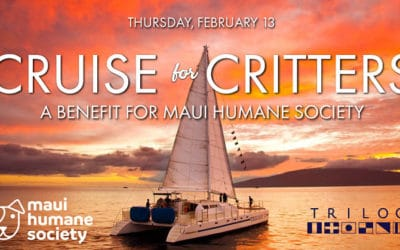 Cruise for Critters: A Benefit for Maui Humane Society