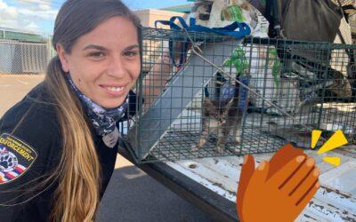 Humane Enforcement Officer Shapiro Rescues a Kitten