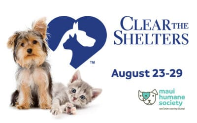 Clear the Shelters: Fee-Waived Adoptions
