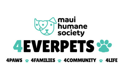 Maui Humane Society Launches 4EverPets Community Assistance Program