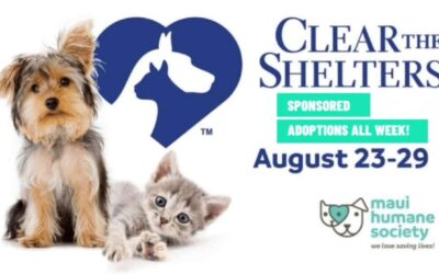Clear the Shelters: All Adoption Fees SPONSORED Aug. 23-29