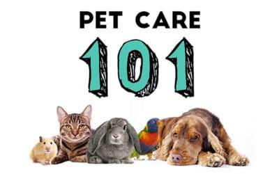 Pet Care 101