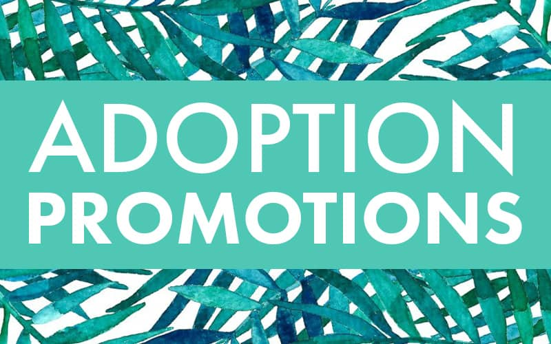 Check out this month's Adoption Promotions!
