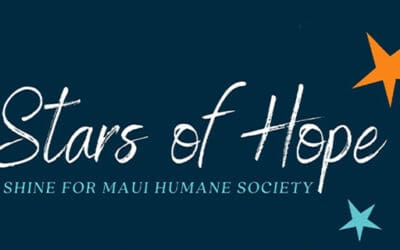 December 1 @7pm: Stars of Hope Lighting Ceremony