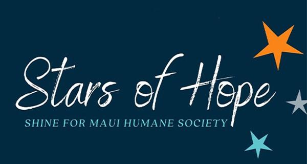 December 1 @7pm: Stars of Hope Lighting Ceremony