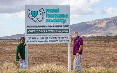 The Maui News: Mahi Pono leases land so Maui Humane Society can expand