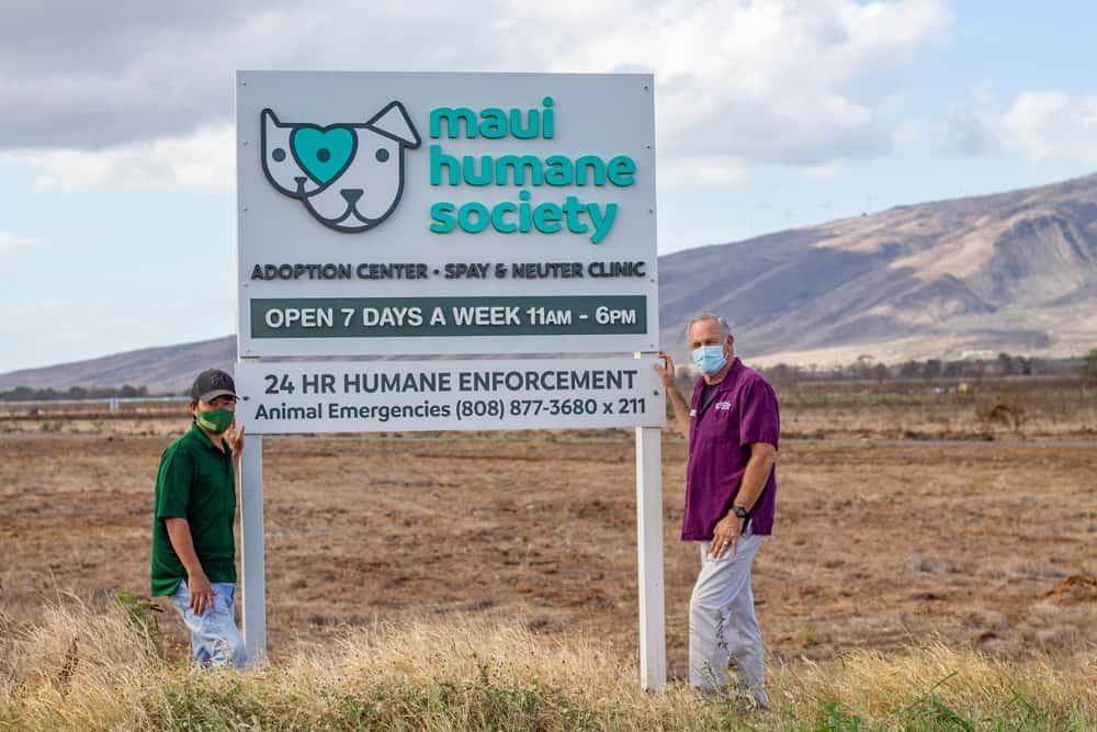 Mahi Pono and Maui Humane Society Partnership