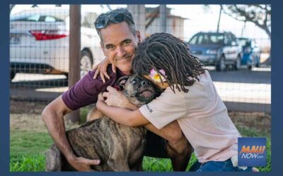 Maui Now: Pet Adoption Story Earns $50,000 Petco Foundation Grant for Maui Humane Society