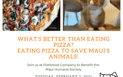 Pizza for Paws: Flatbread Co. Paia Benefit Dinner (Dine In or Take Out)