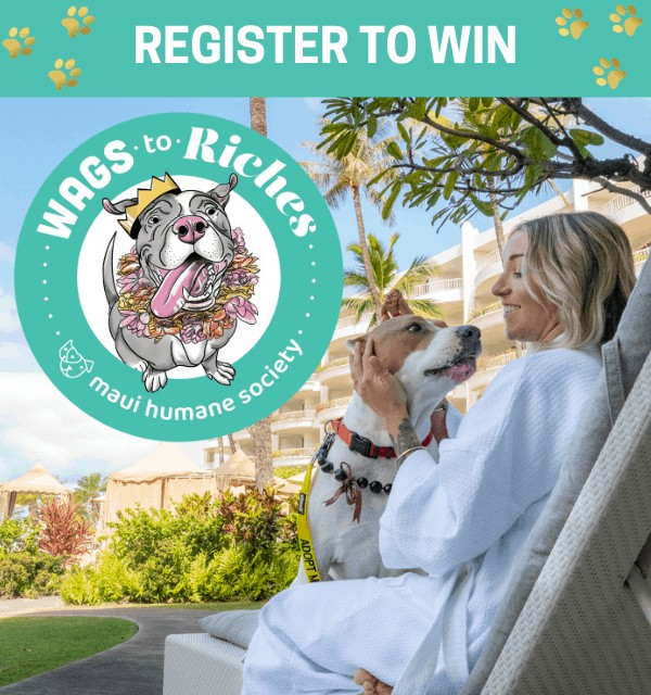 Wags to Riches - Register to Win!