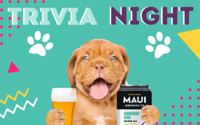 Dog & Cat Trivia Night at Maui Brewing Co. (Kihei)