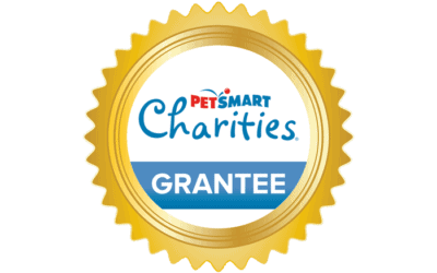 Maui Humane Society receives $40,000 grant from PetSmart Charities