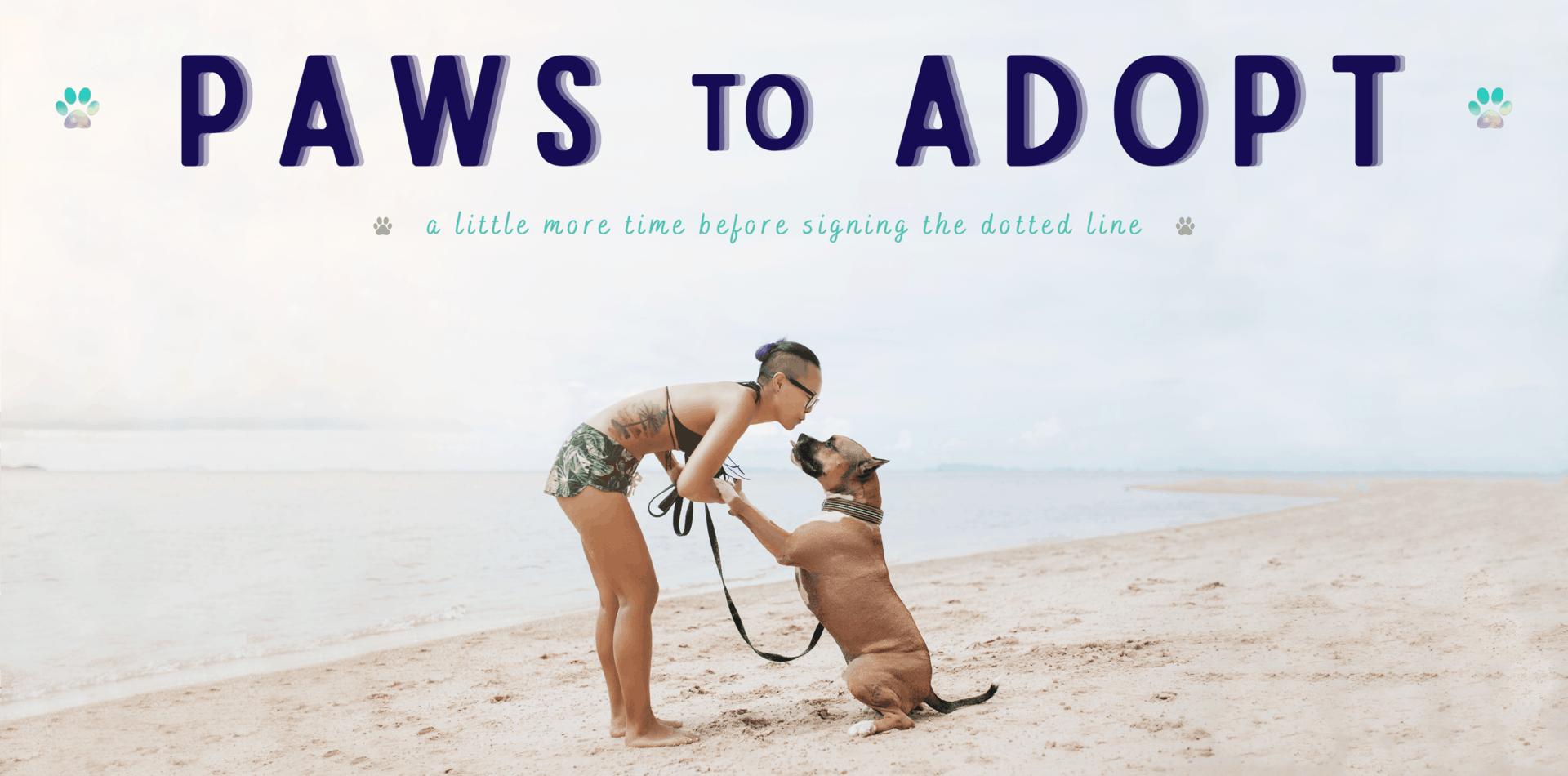 woman on beach with pitbull mix dog